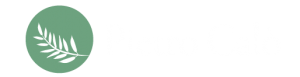 Pietro Calo Logo
